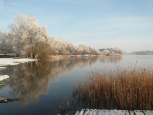 Beetzsee im Winter
