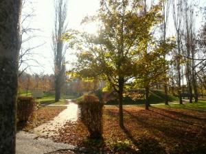 Herbst 3 KIEZ